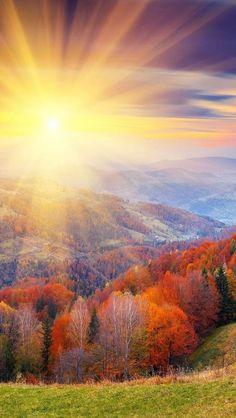 Beautiful Autumn Sun share moments