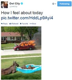 """This tweet is priceless. Adam Young/Owl City """"How I feel about today"""""""