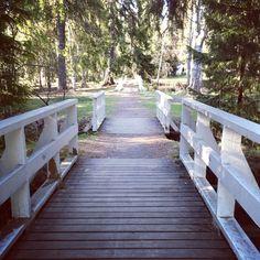 Ainola Park - Oulu