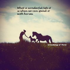 Blurred Horse Person Silhouette by matt ikus All The Pretty Horses, Beautiful Horses, Animals Beautiful, Beautiful Scenery, Beautiful Moments, Silhouettes, Person Silhouette, Baby Animals, Cute Animals