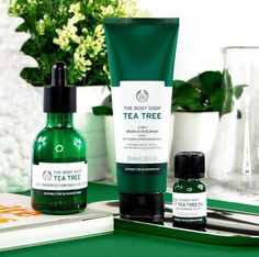 Our number one anti-acne skin care range since Powerful Tea Tree oil has proven healing and antibacterial properties for any skin. We hand-pick and steam distill each Tea Tree leaf within The Tea Tree range helps to create clearer skin in The Body Shop, Body Shop Tea Tree, Body Shop At Home, Acne Skin, Acne Scars, Huile Tea Tree, Tea Tree Oil For Acne, Tighten Pores, Unclog Pores