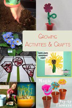 Growing Activities and Crafts - http://rainydaymum.co.uk/growing-activities-crafts