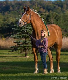 In 2010, Guinness World Records recognized a Belgian named Big Jake as the tallest living horse. Big Jake stands at an impressive 20 hands, ...