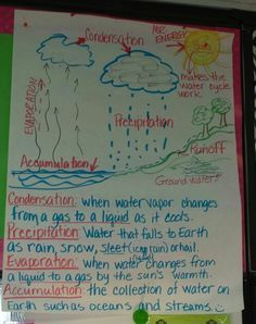 Water cycle anchor chart -science Science Boards, Science Ideas, Science Resources, Science Education, Science Lessons, Science Activities, Science Curriculum, Water Cycle Chart, Water Cycle Poster