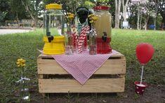 festa no parque decoração 5