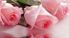 Sonia Maria - Google+