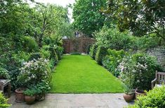 DESIGNER: BUTTER WAKEFIELD, LONDON - TOWN GARDEN/ BACK GARDEN WITH LAWN AND GREEN BORDERS