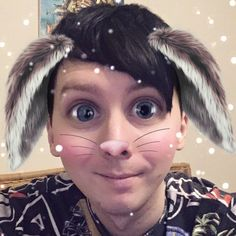 Loads of you are asking me to tweet the bunny pic from my YouTube community tab so here you go
