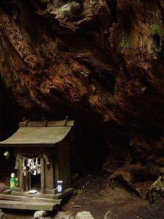 #shinto #shrine #spirithouse