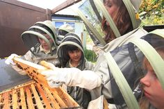 """Jo Sparlkes, the gardener at the Charlton Manor Primary School, with 10 and 11 year old children opening a hive that was set up there two years ago. The children took over the activity, as well as the teachers. See more at """"The Flight and Plight of the Honey Bee - An interview with Éric Tourneret, 'The Bee Photographer'."""" www.merchantandmakers.com/honey-bees-interview-eric-tourneret. Image © Éric Tourneret / www.thehoneygatherers.com."""