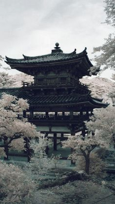 Aesthetic Japan, Japanese Aesthetic, Magic Places, Places To Go, Japanese Culture, Japanese Art, Iphone Wallpaper Japan, Pandaren Monk, Images Esthétiques