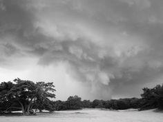 Storm, te Soesterduinen Amersfoort. Zwart/wit fotografie.