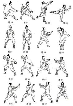 106 Tai Chi Poses for