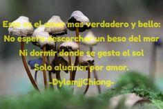 Este es el amor mas verdadero y bello: No espero descorchar un beso del mar Ni dormir donde se gesta...
