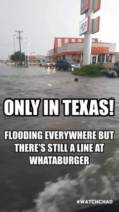 These 43 cleverly amusing memes will make them grin in a matter of moments. Here is 43 Extremely Hilarious Memes Of The Month. All of them so funny and will make you laugh out loud. Texas Meme, Texas Quotes, Texas Humor, Texas Funny, Oklahoma Memes, Southern Humor, Southern Sayings, Texas Weather, Only In Texas