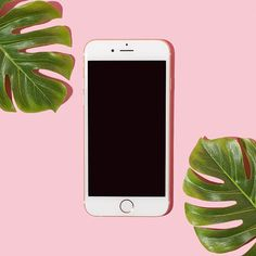 Minimal Pink iPhone No. Photography Sites, Product Photography, Cake Logo Design, Instagram Marketing, Overlays Picsart, Collage Background, Instagram Frame, Pink Iphone, Flower Backgrounds
