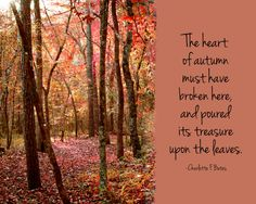 Fall nature quote.