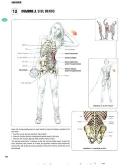 Strength training anatomy 13. Dumbell Side Bends Abs, core, six pack, flat stomach, no more muffin top, summer body, bikini exercises
