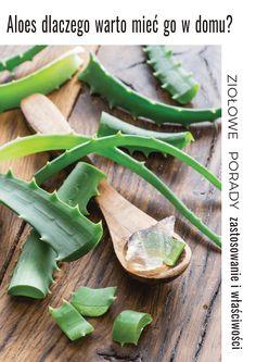 Właściwości i zastosowanie aloesu. Dlaczego warto mieć aloes w domu? Poznaj zioło, które pomogło mojej rodzinie nie raz. Aloe Vera, Healthy Beauty, Good Advice, Green Beans, Natural Remedies, Avocado, Good Food, Food And Drink, Health Fitness