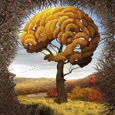 As estações do cérebro - Outono