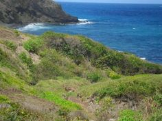 Castries, Caribbean, St Lucia Lots/Land  For Sale - Property Deals in St Lucia - IREL is the World Wide Leader in St Lucia Real Estate