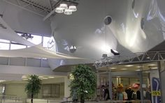 ¿Cómo mejorar el impacto visual de su negocio? Track Lighting, Ceilings, Ceiling Lights, Home Decor, Ceiling Stars, Under The Stars, Modern Interior Decorating, Modern Interiors, Modern Minimalist