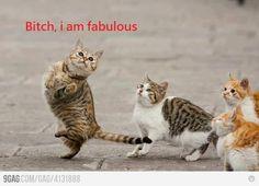 I'mFabulous!=)