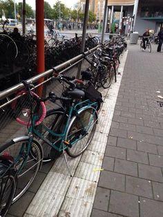 Fietsen geparkeerd op de geleidelijn, station Groningen (september 2013).