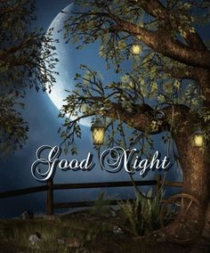 Good Night Gif, Good Night Image, Good Night Quotes, Evening Quotes, Good Night Blessings, Good Night Greetings, Good Morning, Blessed, Night Messages