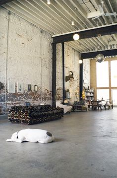Taxidermy & Discoballs http://gallery.apartmenttherapy.com/photo/doubs-free-spirited-in-fishtown/item/239603