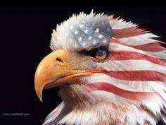 American Flag Eagle : Patriotism and Heroism