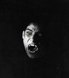 Scott McCall. Teen Wolf.