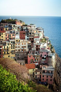 View from vineyards in Manarola, Italy