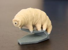 3D printing gone insane: Now you can own a 3D printed tardigrade