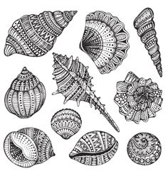 Set of hand drawn vector ornate seashells. Ten black illustrations of shells iso… Set of hand drawn vector ornate seashells. Ten black illustrations of shells isolated on white background for coloring book, tattoo, print on t-shirt, bag Seashell Tattoos, Ocean Tattoos, Tattoo Dotwork, Mandala Tattoo, Maori Tattoos, Mandala Art Lesson, Mandala Drawing, Zentangle Drawings, Zentangle Patterns