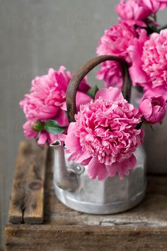 Pink peony in a vintage coffee pot. Spring or Summer decor Flower Aesthetic, Purple Aesthetic, Beautiful Bouquet Of Flowers, Pretty Flowers, Peony Painting, Peony Flower, Pink Peonies, Ikebana, Floral Arrangements