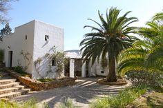 C128 - St.Lorenzo - finca - For more info contact Zan Ibiza