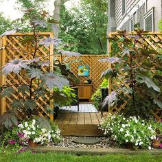 """Another way to gain privacy is to create a separate """"room"""" in your backyard.  You can do this by adding plantings or small walls around a deck or patio.  The addition of  a pergola will give your """"room"""" a roof that can be accessorized with fabric and lighting to turn the space into what could become the favorite space of your home. / drdanslandscaping.blogspot.com"""
