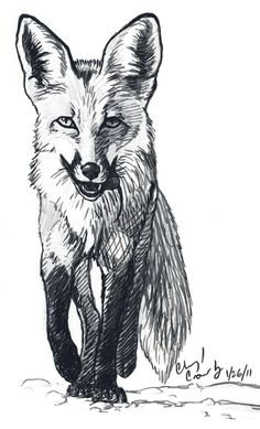 Fox who caught a Mouse by silvercrossfox.deviantart.com on @deviantART