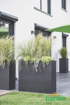 Planters as a privacy screen on the terrace, ., Planters as privacy screen on the terrace, Though age-old in thought, your pergola has been having a contemporary renaissance these kinds of. Balcony Planters, Garden Planters, Indoor Garden, Outdoor Gardens, Home And Garden, Modern Planters, Modern Fence, Vertical Gardens, Back Gardens