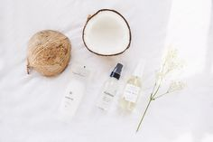 Urban Outfitters - Blog - UO Guide: Coconut Beauty