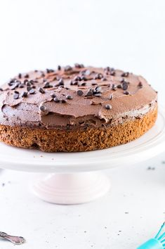 This Chocolate Coffee Cake is a rich and velvety cake is also a flourless chocolate cake. Its packed with protein, decadent chocolate and coffee flavour and is naturally sweetened. It also stays moist for days thanks to the inclusion of olive oil. Chocolate Cake With Coffee, Coffee Cake, Flourless Chocolate Cakes, Decadent Chocolate, Almond Recipes, Baking Recipes, Sugar Free Baking, Cupcake Cakes, Cupcakes