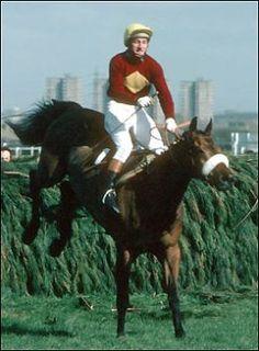 Red Rum 1977