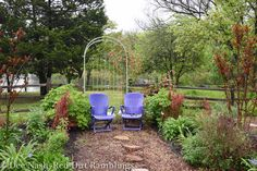 Purple chairs with Ruby Slippers hydrangea and Orange Rocket barberry