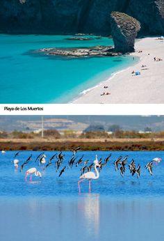 Playa de Los Muertos #Almeria www.almeriadefiesta.com