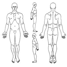 image result for female body diagram blank