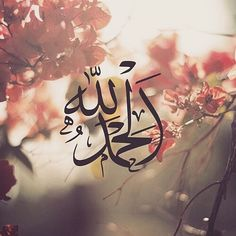 ______________________________ islamic-art-and-quotes: Arabic calligraphy on flowers – Alhamdulillah الحمد لله All praise is due to Allah alone From the collection: IslamicArtDB Calligraphy Flowers, Allah Calligraphy, Islamic Art Calligraphy, Quran Wallpaper, Islamic Quotes Wallpaper, Religious Wallpaper, Emoji Wallpaper, Screen Wallpaper, Islamic Images