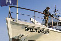 John Wayne's yacht Wild Goose