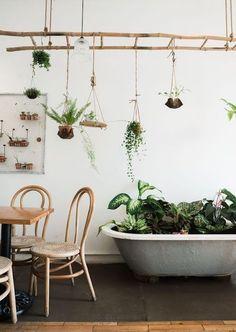 echelle en bois suspendue du plafond, rangements de pots de fleurs suspendus, baignoire grise avec des plantes vertes dedans, table et chaises en bois