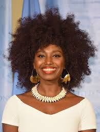 tresses afro americaines - Recherche Google